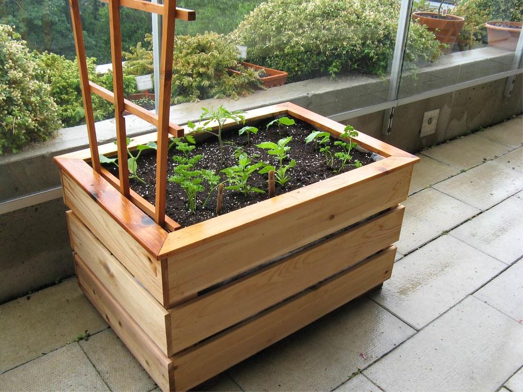 Organic vegetable balcony garden box 2 flickr photo for Balcony vegetable garden