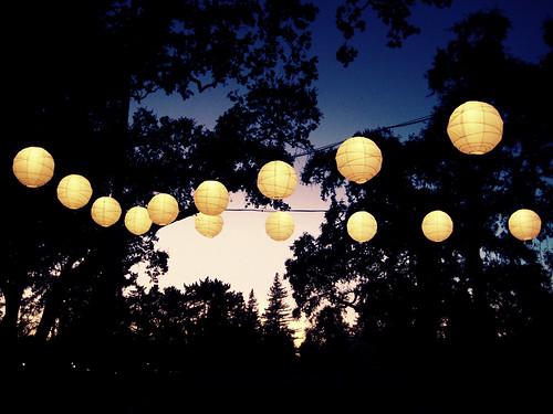 trees wedding sunset night lights evening lanterns lantern sd1000 sophisu