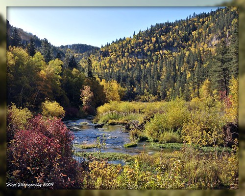 morning autumn red fall colors beautiful yellow southdakota blackhills spearfishcanyon season nikon stream silence picnik d300 18200vr weddingabbottjonesblackhillsspearfishcanyon rememberthatmomentlevel1