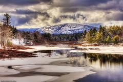 Winter Snow in Acadia