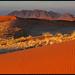 Namibian Sunrise by Sandra OTR