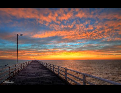 ocean sunset sky nature water clouds canon waves seagull jetty australia wideangle adelaide southaustralia lightpole hdr grange 1740 3xp photomatix grangejetty 5dmkii daleallman