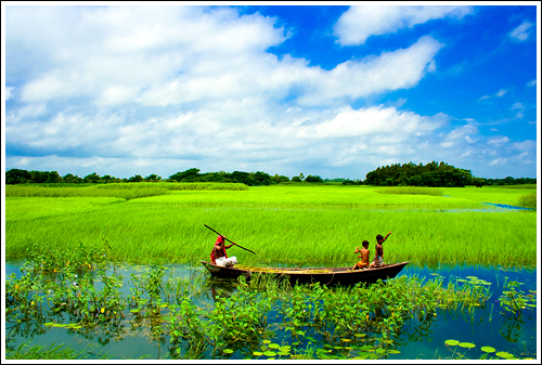 nature pictures nature photography  bangladesh
