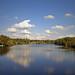 Hammonton Lake, again..... by Donna Balchunas