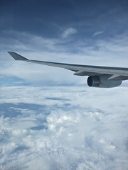 aviation, airplane, wing, vehicle, air travel, sky, jet aircraft, flight,