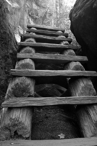 Ladder B&W