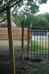 outdoor structure(0.0), split rail fence(0.0), gate(0.0), backyard(1.0), home fencing(1.0), picket fence(1.0), wood(1.0), yard(1.0),