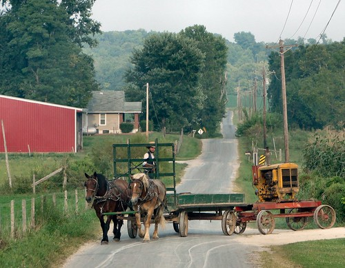 horse man wagon team working indiana amish orangecounty oldorder dschx1