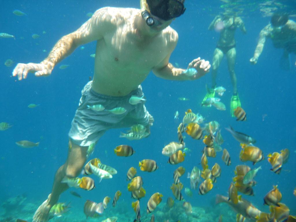 Gili Trawangan Underwater 07