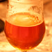 Pliny the Elder 013