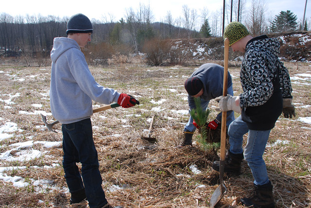 Watershed Forestry~Earth Day 2011