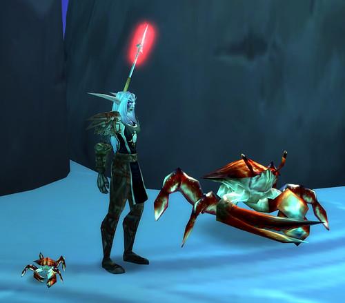 Fishing Crab Pet