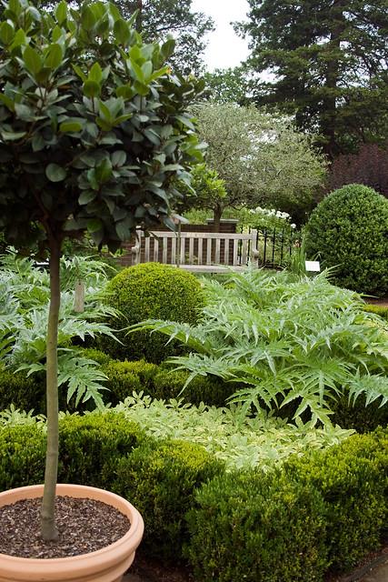 Martha Stewart Herb Garden