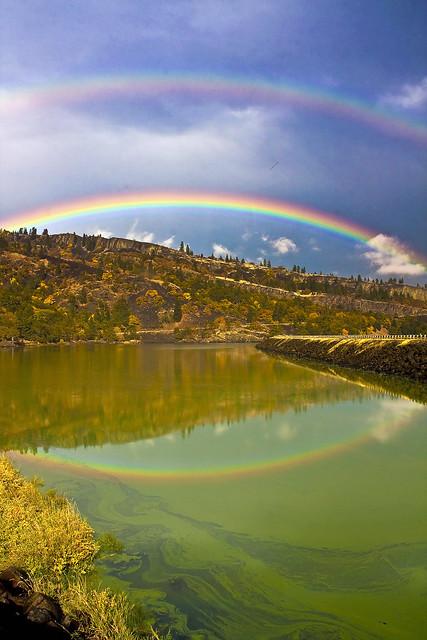 Rainbow_at_Rowland-wo_0469
