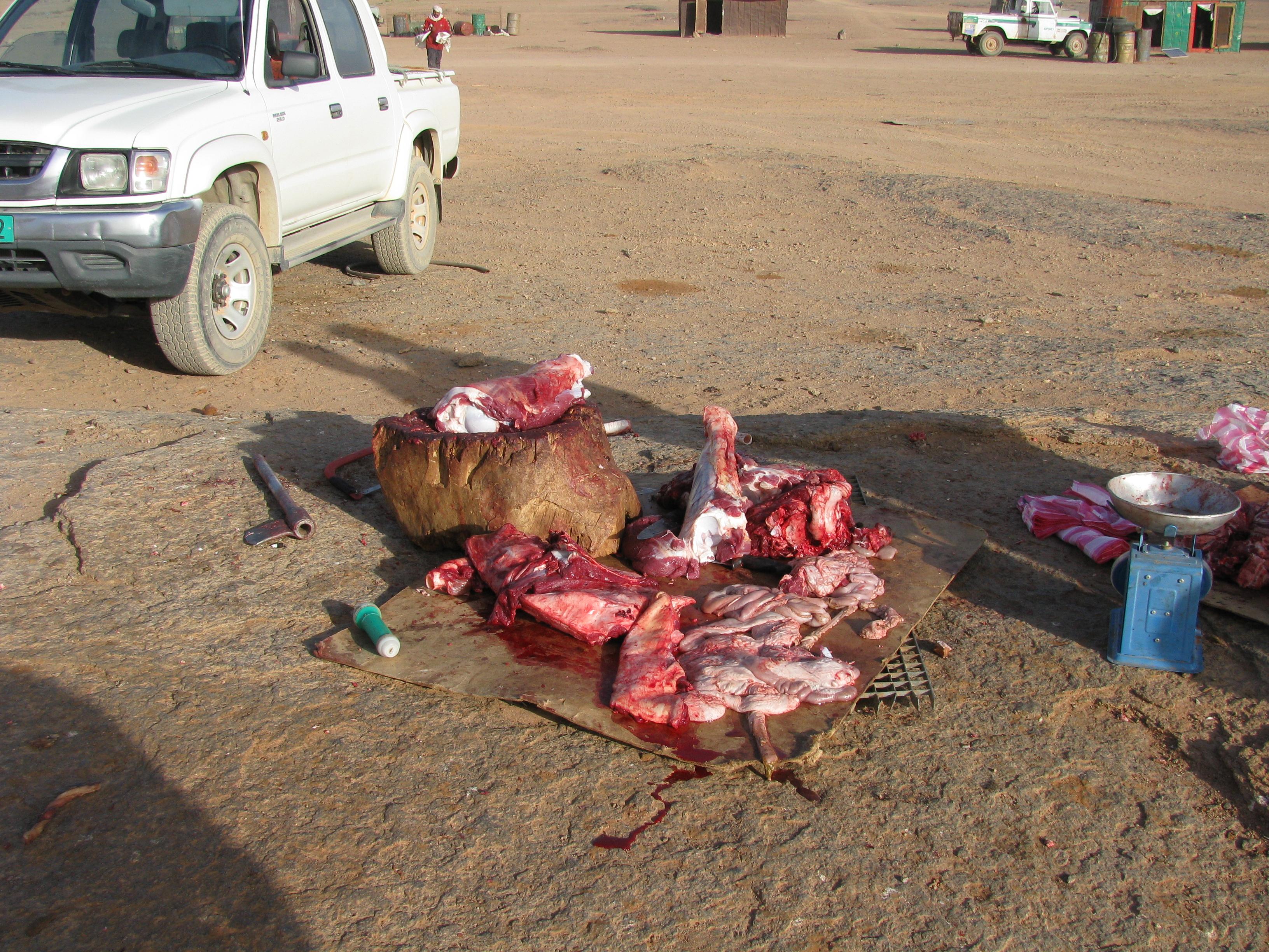 Le conflit armé du sahara marocain 3700482247_407ce7975a_o