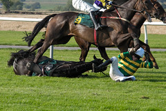 AP McCoy Falls During Horse Race
