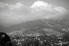 Santa Barbara - A View from the Canary Hotel