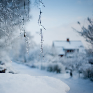 Winter bokeh