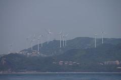 風車いっぱい
