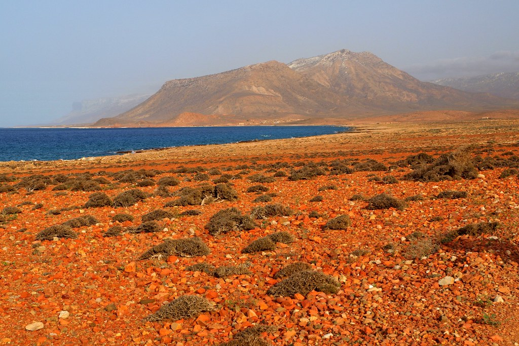 Socotra Island, Yemen by Martin Sojka (Creative Commons)