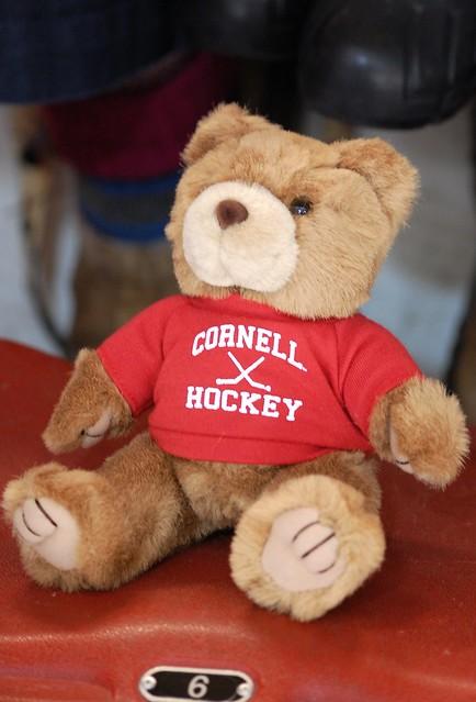 Toys For Tots Bear : Bear flickr photo sharing