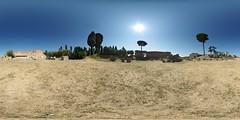 Roman Forum (7)