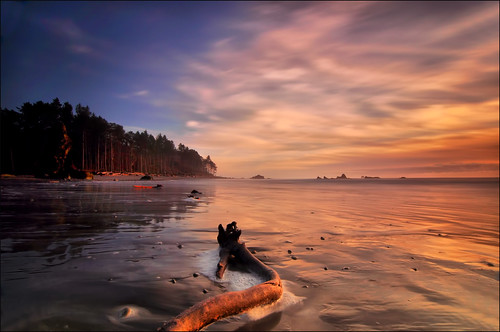Ruby Beach Late Sun, Forks Area, Washington State