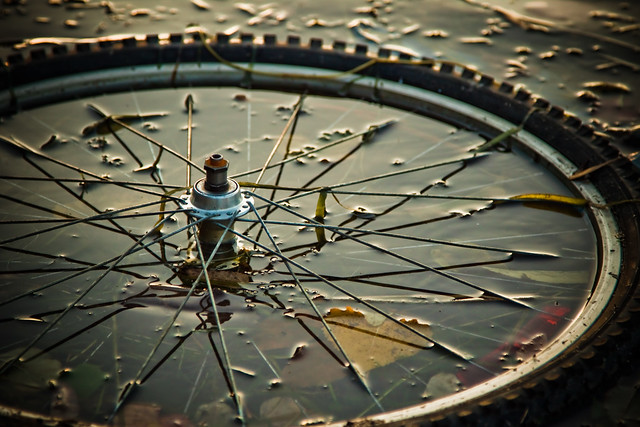 Wheel in the canal