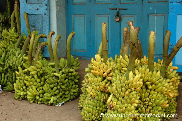 No Shortage of Bananas - Chennai, India
