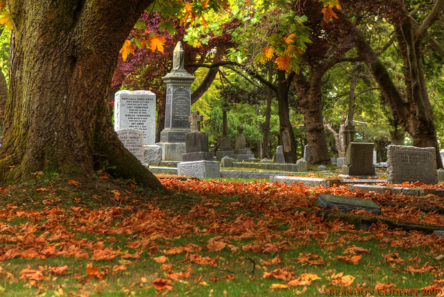 Fall Colors in Ross bay Cemetery