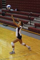 volleyball player, ball over a net games, volleyball, sports, competition event, team sport, ball game, tournament,