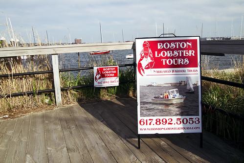 Boston Lobster Tours