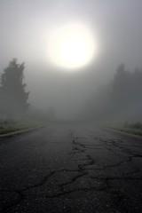 fog, sunlight, sun, nature, light, haze, morning, mist, sunrise,