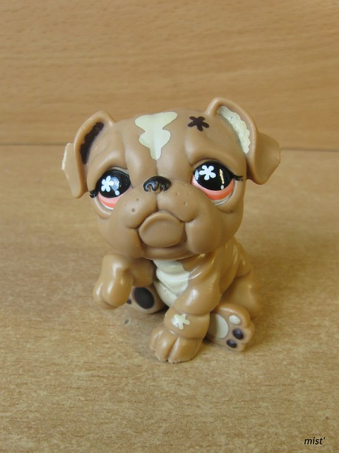littlest pet shop bulldog littlest pet shop bulldog 607 flickr photo sharing 9375