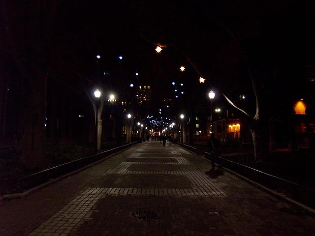 locust walk at night