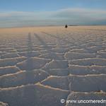 Tiny in the Desert - Salar de Uyuni, Bolivia