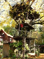 leaf, tree, cottage, tree house, autumn,