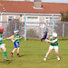 2008 Roanmore Charity Hurling Blitz
