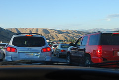 Grapevine Traffic