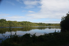 Lake in Forêt Domaniale des Andaines
