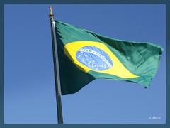 Brasil e seus objetos