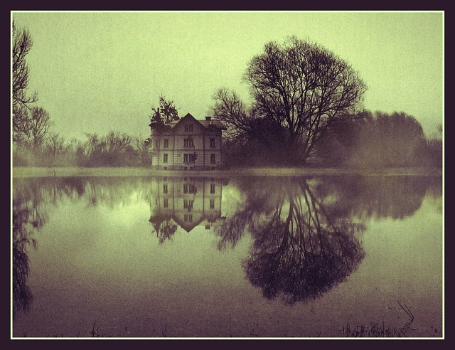 A house in the swamp