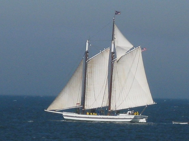 sf sailing alma