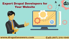 Expert Drupal Developers for Your Website