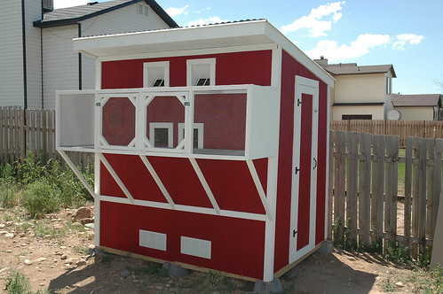 Download pigeon coop plans free plans free for Pigeon coop ideas