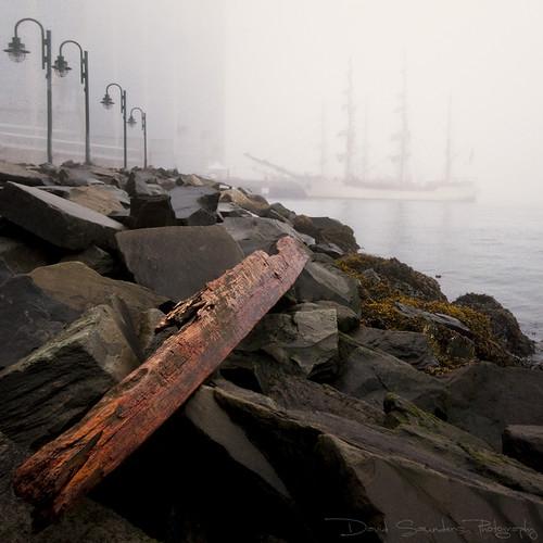 morning fog sunrise coast ship shore sail tall ha copyrightallrightsreserved davidsaunders dsc9641 scottkelbysworldwidephotowalkhalifax davethehaligonian tallshipinthemorningfog whatsunrise