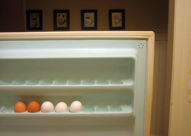 my fridge door