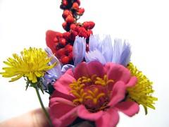 belles fleurs pour une belle jeune fille