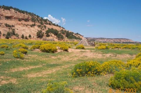 Uncle Robert's land at Tall Mtn