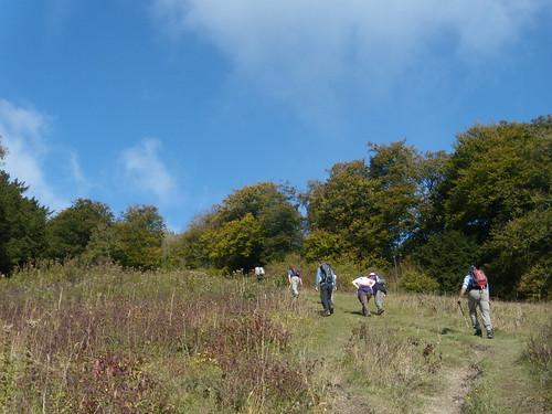 Climbing Shoulder of Mutton Hill